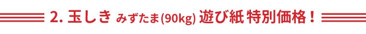 2.玉しきみずたま(90Kg)遊び紙特別価格!