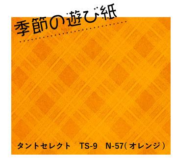 季節の遊び紙 タントセレクトTS-9 N-57(オレンジ)
