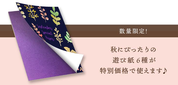 数量限定!秋にぴったりの遊び紙6種が特別価格で使えます♪