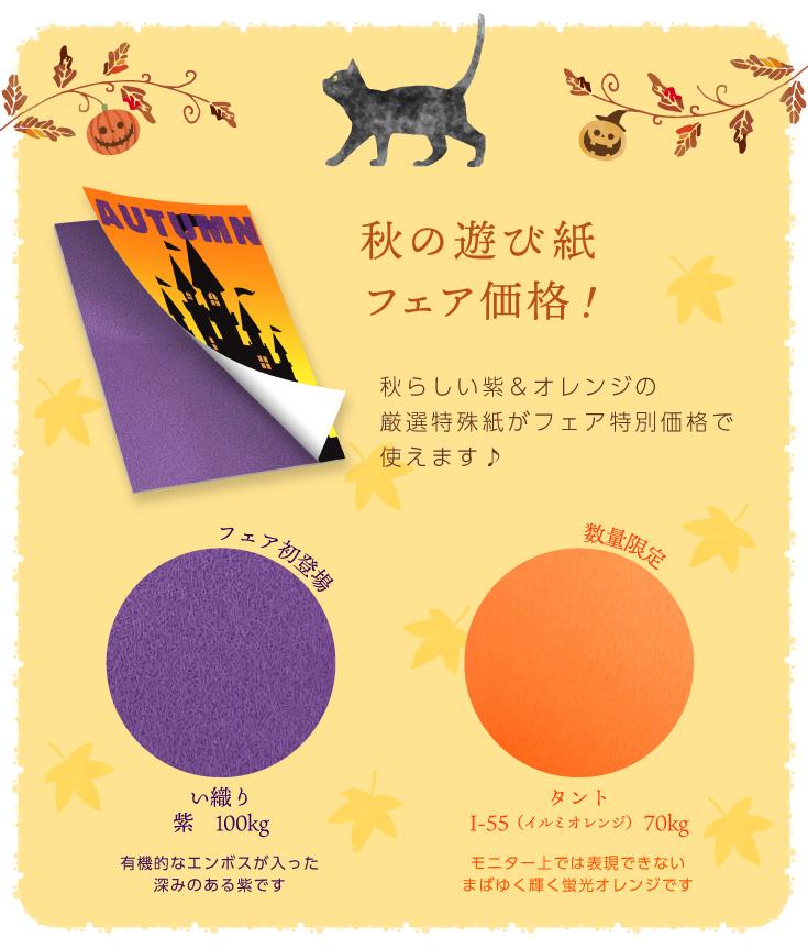 秋の遊び紙フェア価格!秋らしい紫&オレンジの厳選特殊紙がフェア特別価格で使えます♪ フェア初登場「い織り紫 100kg」有機的なエンボスが入った深みのある紫です。 数量限定「タントI-55(イルミオレンジ) 70kg」モニター上では表現できないまばゆく輝く蛍光オレンジです。